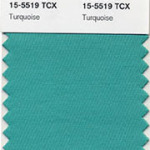 PANTONE COLOR OF THE YEAR FOR 2010!