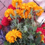 FRIDAY FLOWERS: GARDEN BOUNTY