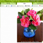 FRIDAY FLOWERS: CAMELLIAS AND THOUGHTS ON GOOGLE+