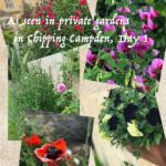 COTSWOLD GARDEN TOUR: PART 1