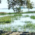 TRAVEL TO BEAUFORT, SOUTH CAROLINA