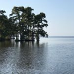 TRAVEL: TO EDENTON,  NORTH CAROLINA