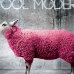 HOW TO PROTECT WOOLENS FROM MOTHS